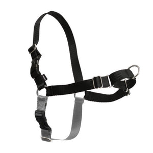 PetSafe Easy Walk Harness Black (Assorted Sizes)