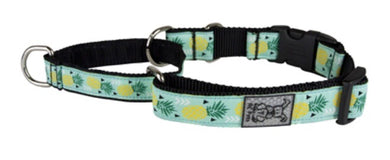 RC Pets Easy Clip Web Training Collar Pineapple