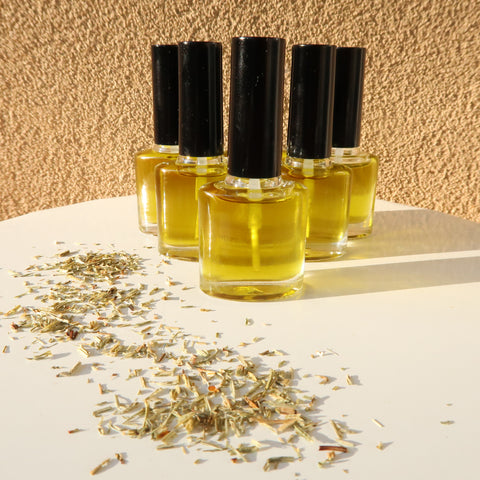 Horsetail-Infused Nail Repair Oil