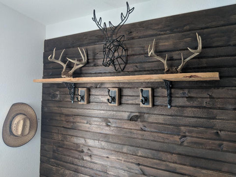 mud room hooks and horns with cowboy hat hanging up