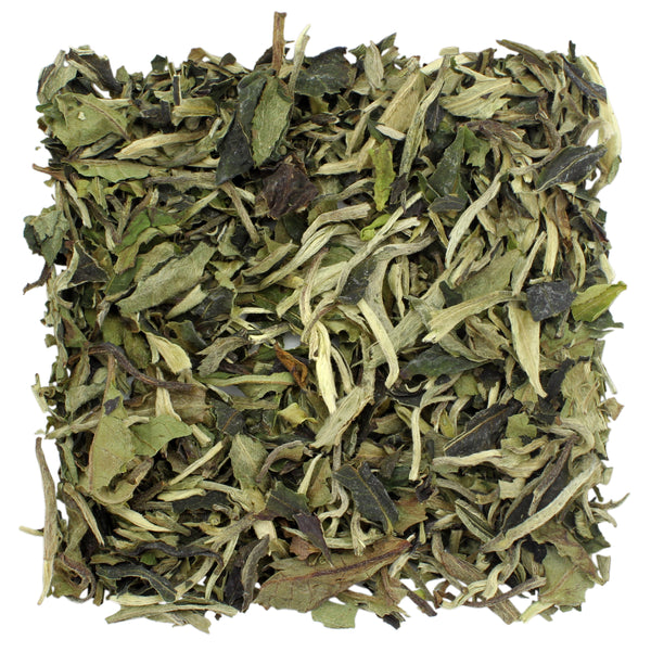 Bai Mu Dan White Tea Sample - SolsticeTeaTraders