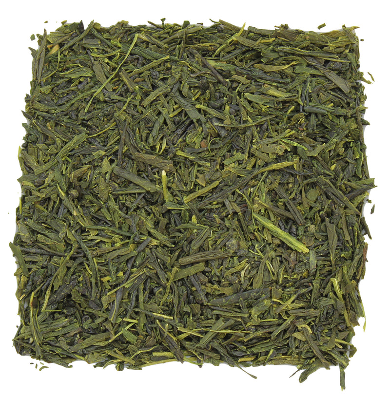 Sencha Saga Green Tea Sample - SolsticeTeaTraders
