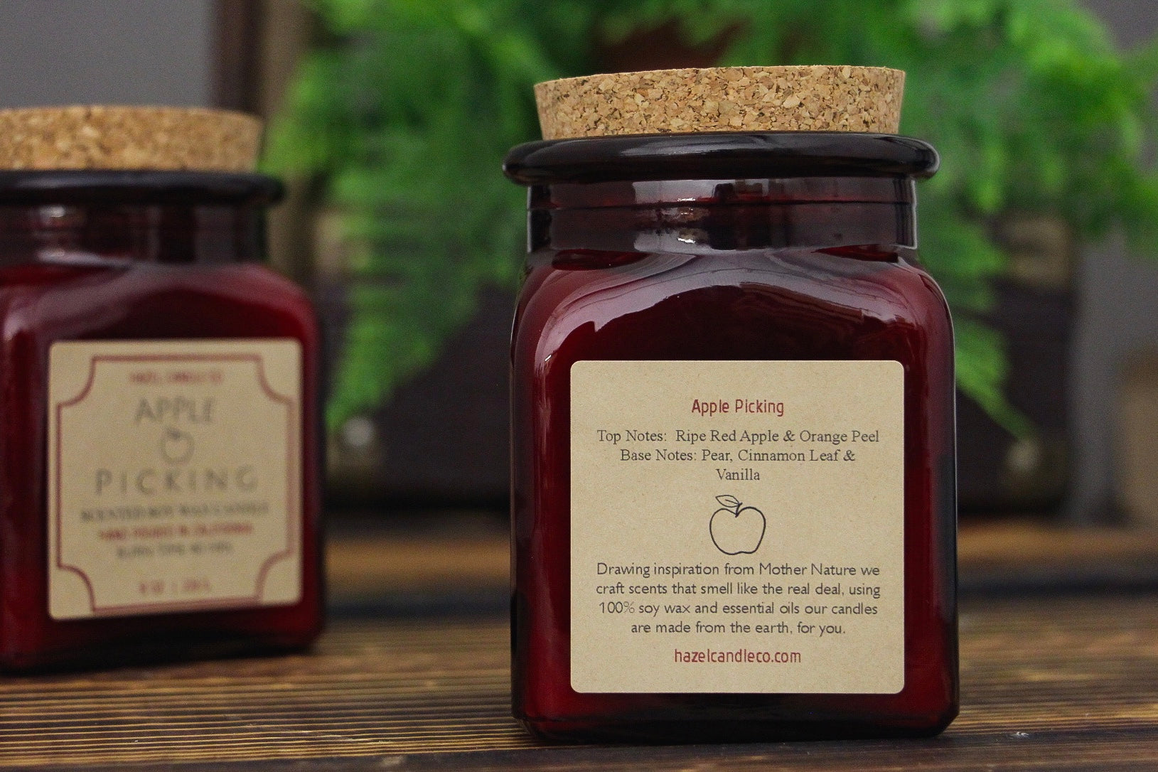 Apple Picking Soy Candle