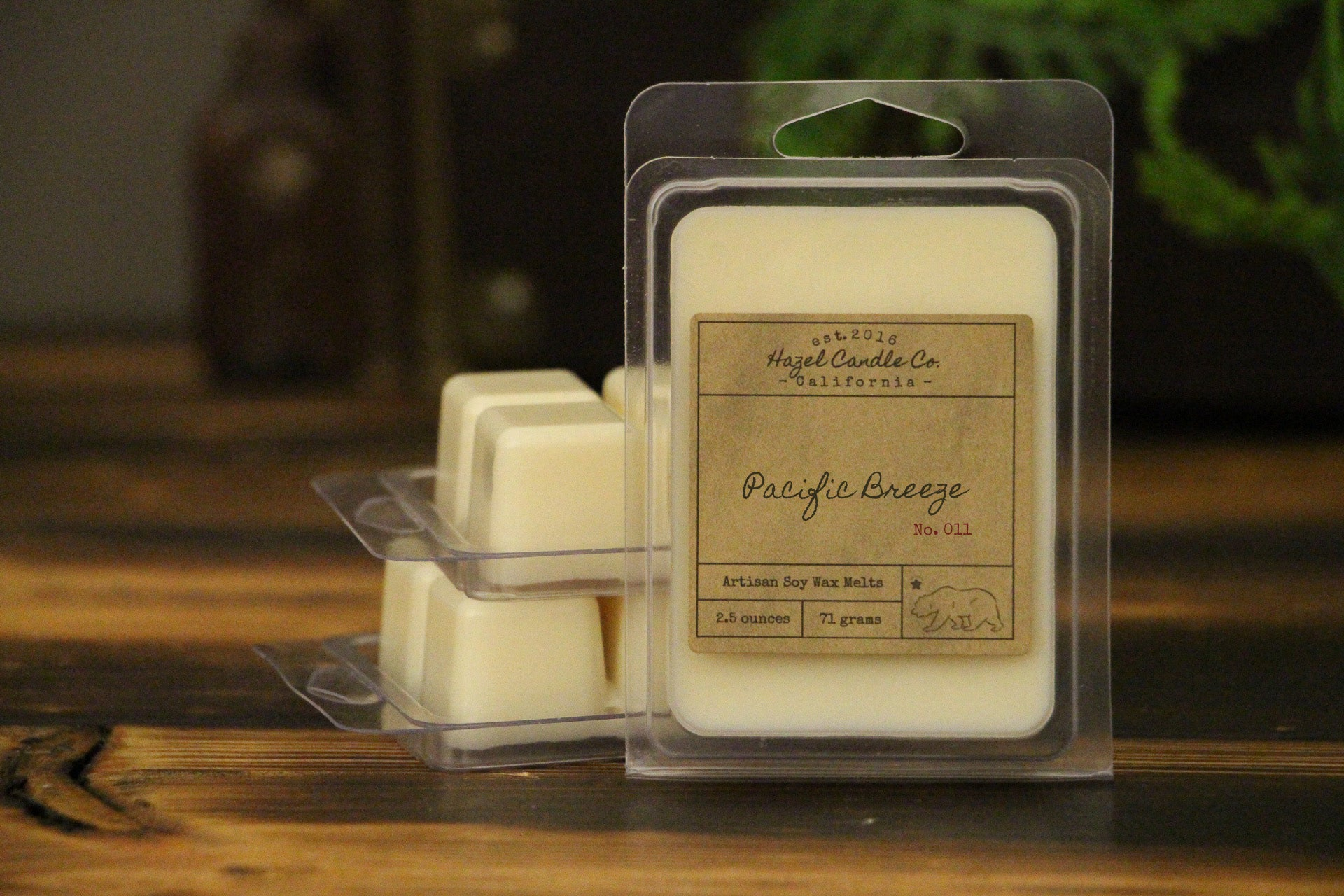 Pacific Breeze Wax Melts