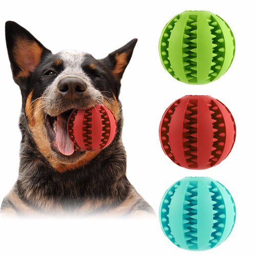Dog Rubber Ball Chew Toy - Dog Market Hub