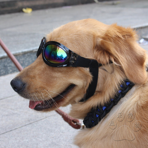 5 Colors Foldable Pet Dog Glasses