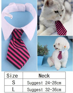Various Dog Bow Tie Collar