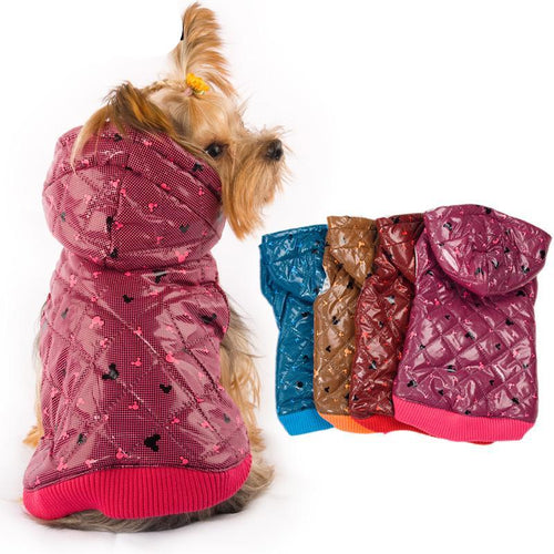 5 Colors Designer Pet Clothing