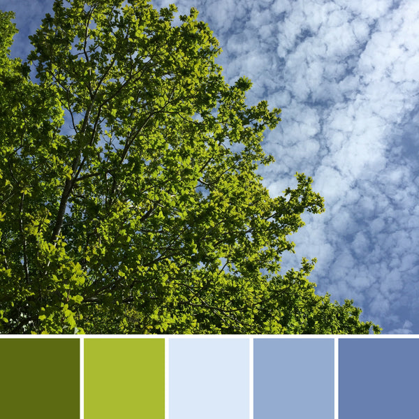 summer inspired colour palettes mood board nature inspiration ideas paint creative best beautiful colourful beach inspo