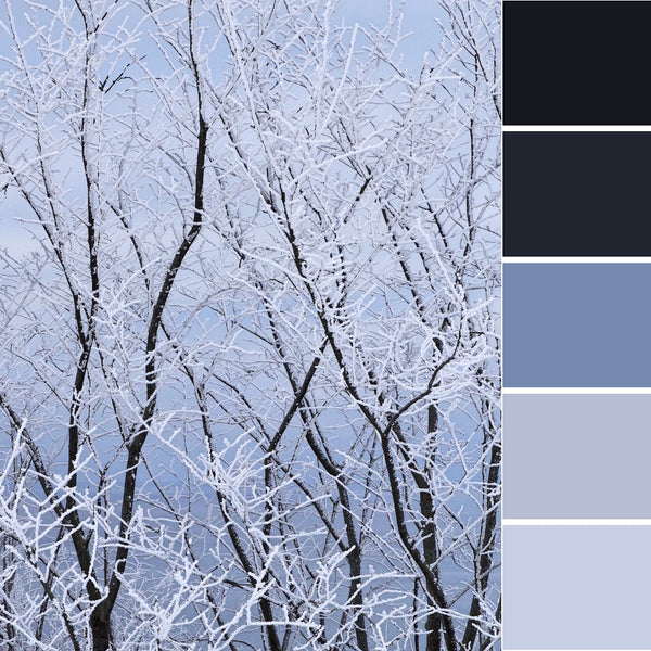 winter wonderland colour inspiration inspo ideas palette design decor cool color paint decoration snow cold dreamy festive Christmas gift trend