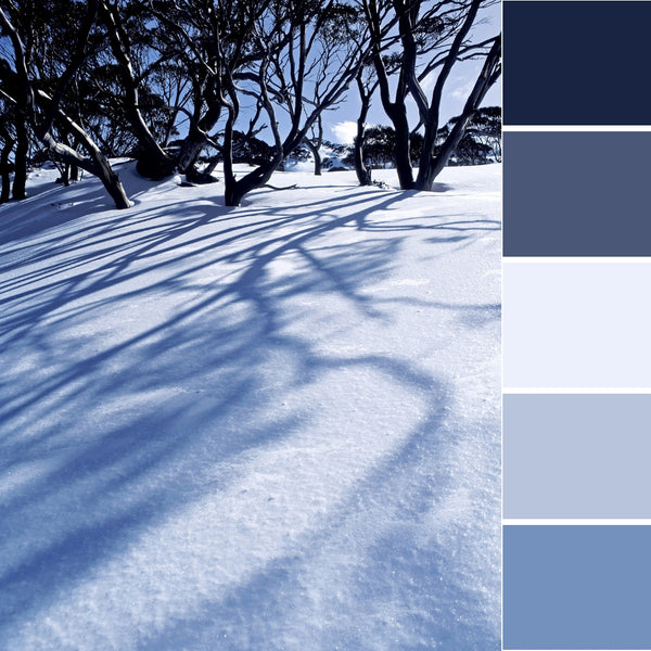 winter wonderland colour inspiration inspo ideas palette design decor cool color paint decoration snow cold dreamy festive