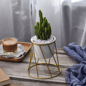 Geometric Gold Wire Plant Pot, Ornament, Nordic Home Accessories, Elm & Blue, Style Life Home