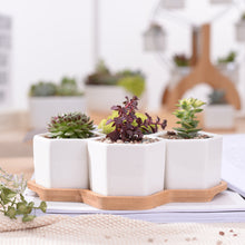 4 Hexagon Flowerpots, Storage, Nordic Home Accessories, Elm & Blue, Style Life Home