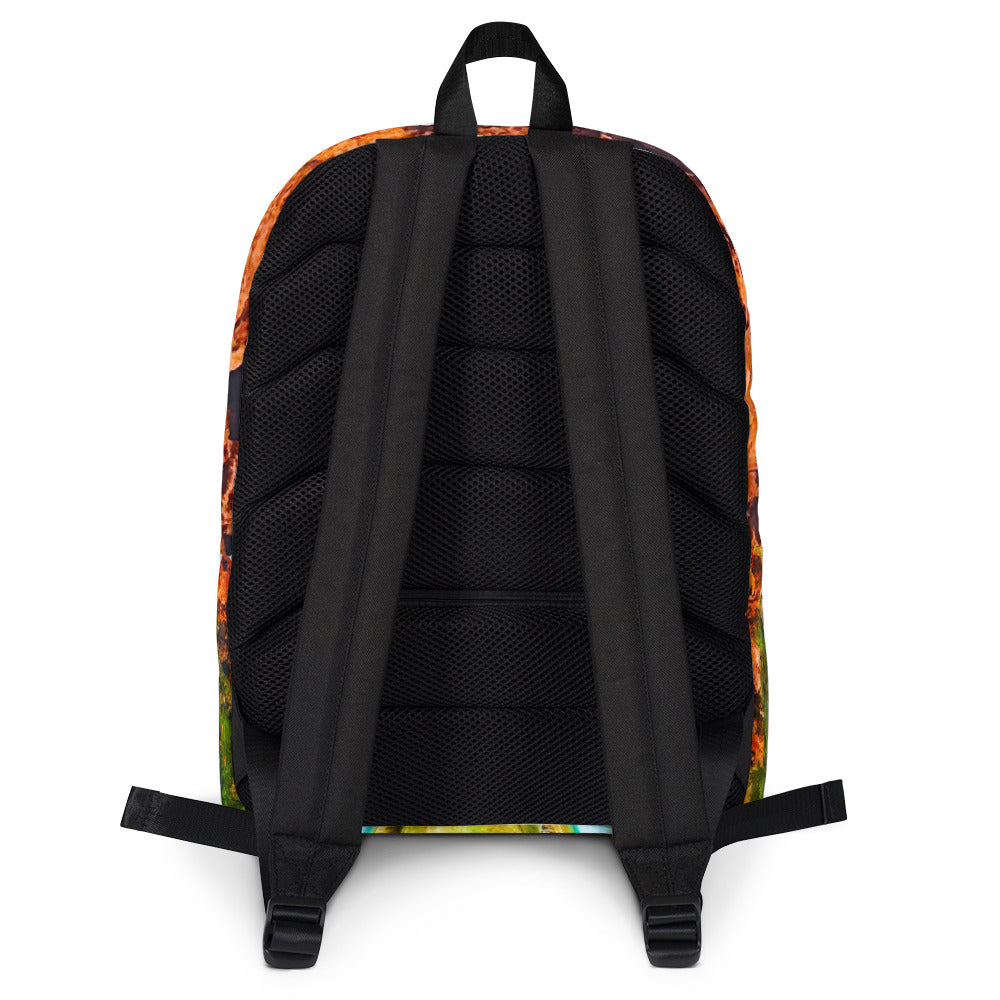 Mooney Falls Photo Backpack