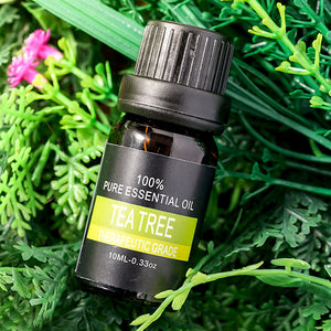 Natural Aromatherapy Essential Oil - Tea Tree - Gem Owl