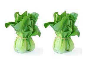 Baby Bok Choy 2 FOR-Fresh Connection-Fresh Connection