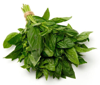 Basil-Fresh Connection-Fresh Connection