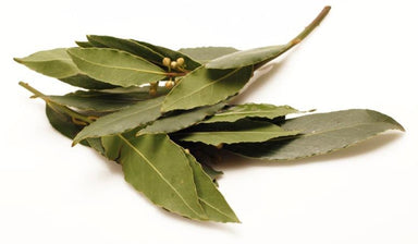 Bay Leaves-Fresh Connection-Fresh Connection