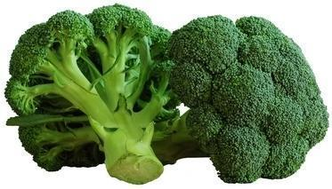 Broccoli - 1kg-Fresh Connection-Fresh Connection
