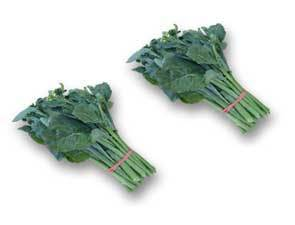 Chinese Broccoli - 2 FOR-Fresh Connection-Fresh Connection