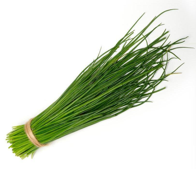 Chives-Fresh Connection-Fresh Connection