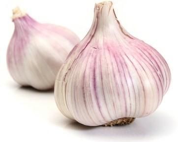 Garlic - Purple - Produce of SPAIN-Fresh Connection-Fresh Connection