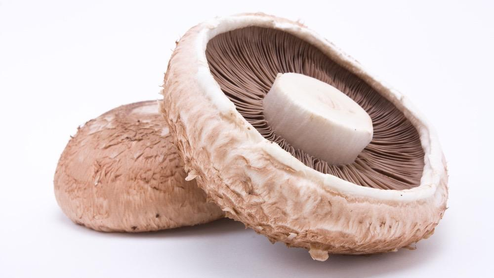 Mushrooms - Swiss Flats/Portobello (500g)-Fresh Connection-Fresh Connection