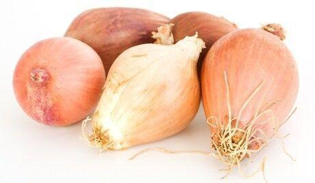 Shallots (300g)-Fresh Connection-Fresh Connection