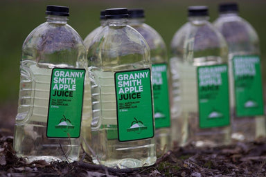 Summer Snow Granny Smith Apple Juice 2L-Summer Snow-Fresh Connection