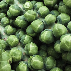 Long Island Improved Brussel Sprouts