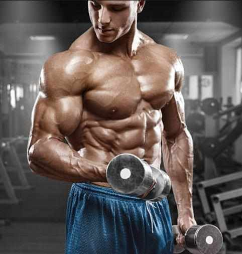 The High Importance of Testosterone in the Body