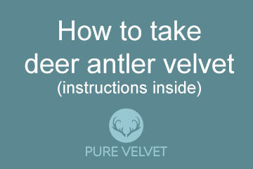 How to take deer antler velvet
