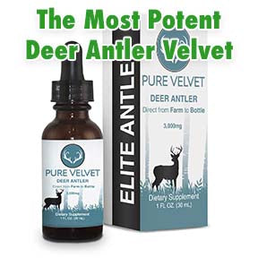 Featured picture of antler velvet with the highest potency