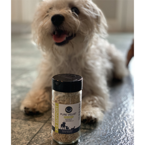 Picture of a dog laying next to our senior dog supplement that promotes healthy joints