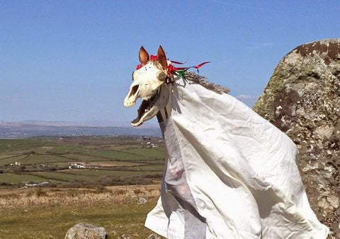 Mari Lwyd the gray mare Wales holiday tradition