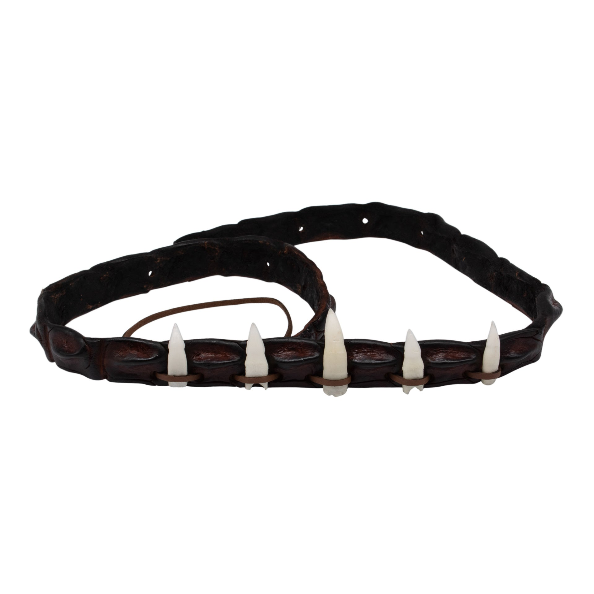 Crocodile teeth hat band-Crocodile teeth hat band-Oz About Oz