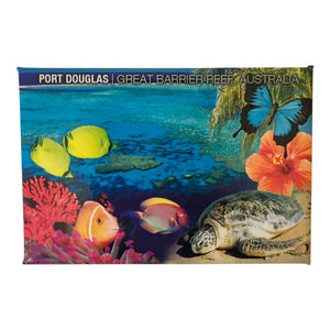 Fridge magnets - Great Barrier Reef-Magnets-Oz About Oz