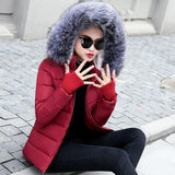 Women Parkas Hooded Outerwear Down Jacket-elatestore-elatestore