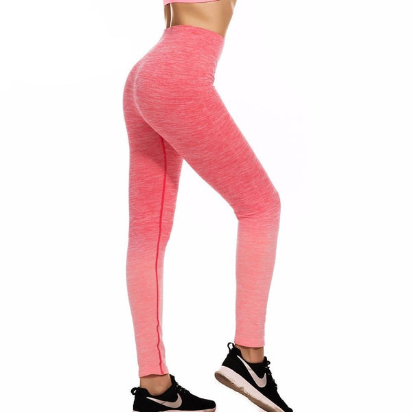 Freeskin Yoga Pants Four Way Stretch Seamless Ombre Yoga Leggings Sport Fitness Gym Running Workout Leggings Tummy Control Tight-elatestore -elatestore