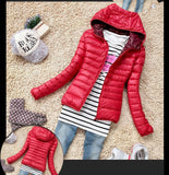 Warm Basic Jacket Slim Hooded Cotton Coat Casual Parka-elatestore-elatestore