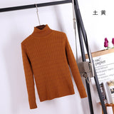 Casual Turtleneck Warm Winter Sweater Thick Knitted Pullover Tops - elatestore