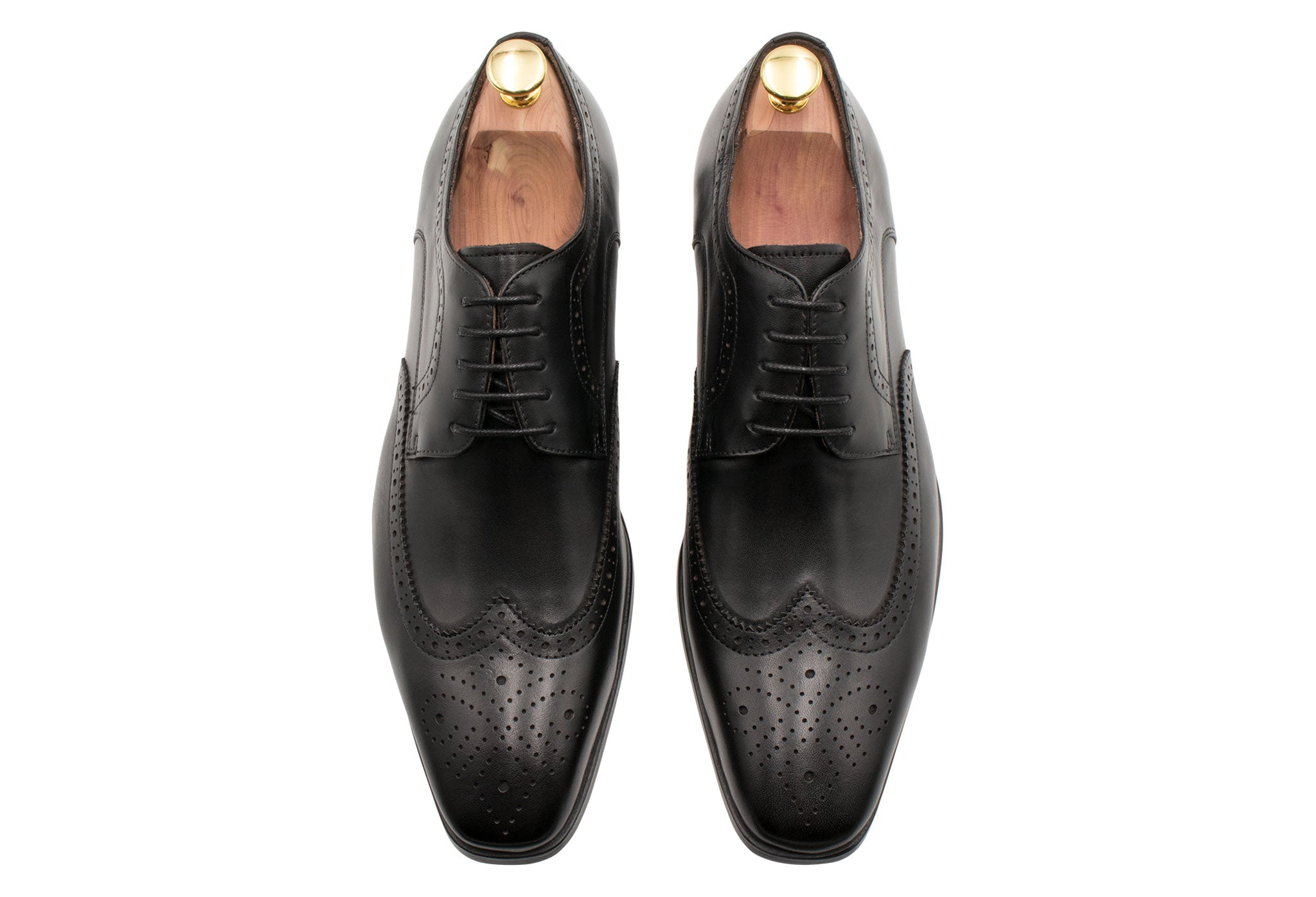 Caseros Wingtip Black Derby Leather Shoes