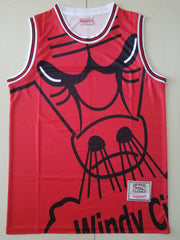 Chicago Bulls Mitchell & Ness big face Jersey