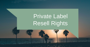 Private Label Resell Rights:  Your Selling Options | Ecommerce Expert