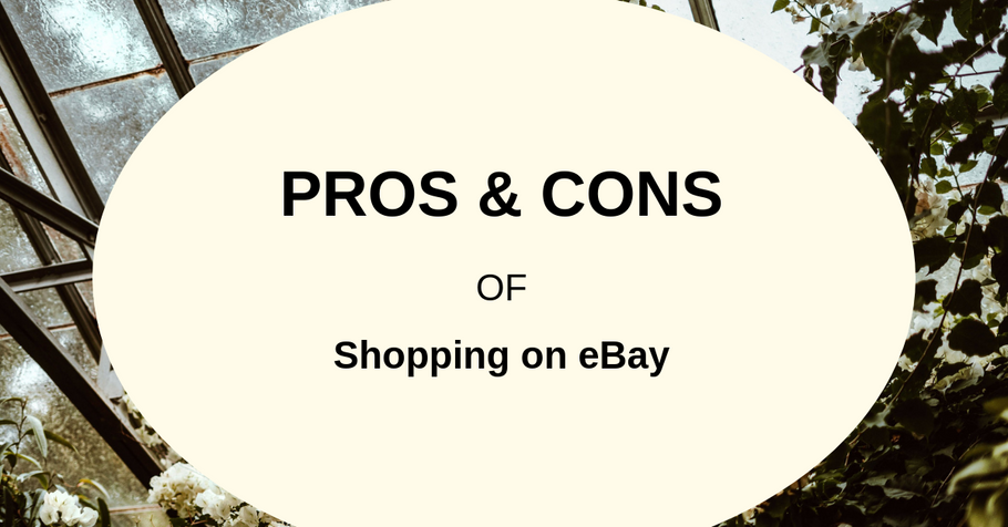 Pros and Cons of Shopping on eBay | Ecommerce Expert