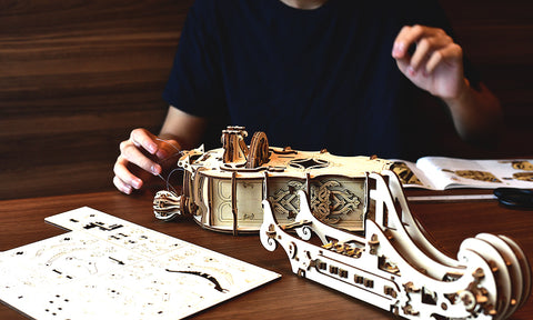 Hurdy Gurdy Mechanical Model Kit