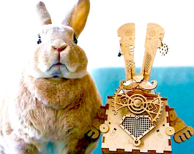Rabbit music box building kit