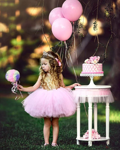 Girl Baby Girl Princess Sequins Dress