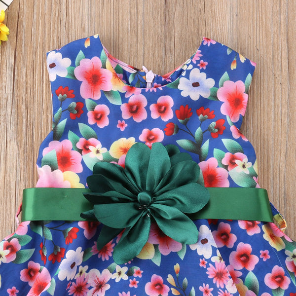 Girl Baby Girl Colorful Flowers Dress