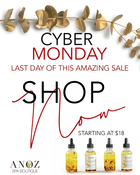Cyber Monday Holiday Package